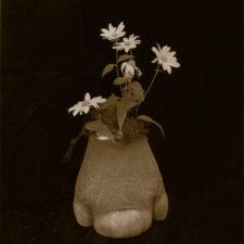 Rhino_Foot_Vase